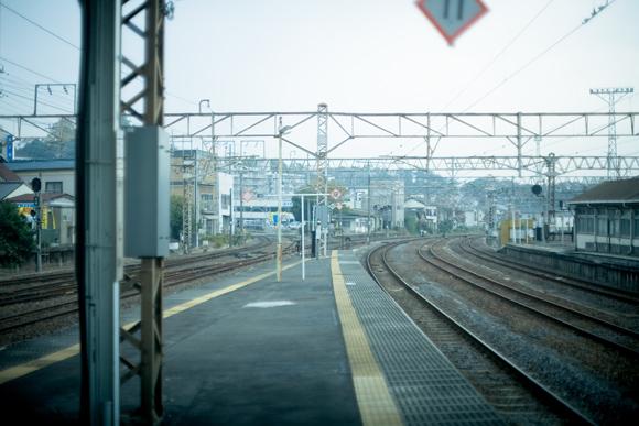 _MG_2755.jpg
